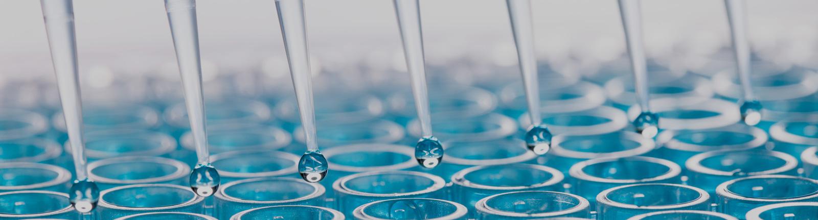 cell and molecular biology biomodels