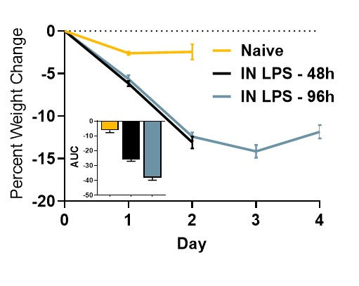 Male Balb/c mice were challenged with 10 μg Lipopolysaccharide (LPS) via intranasal instillation (IN). Mean percent weight loss is shown here.