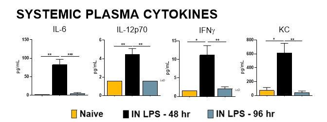 Male Balb/c mice were challenged with 10 μg Lipopolysaccharide (LPS) via intranasal instillation (IN).  Animals were sacrificed at either 48h or 96h post LPS administration.  Plasma was analyzed for IL-6, IL-12p70, KC, and IFN-γ protein levels.