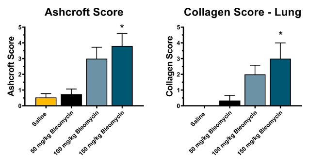 Pulmonary fibrosis scores resulting from subcutaneous osmotic pump-delivered bleomycin exposure