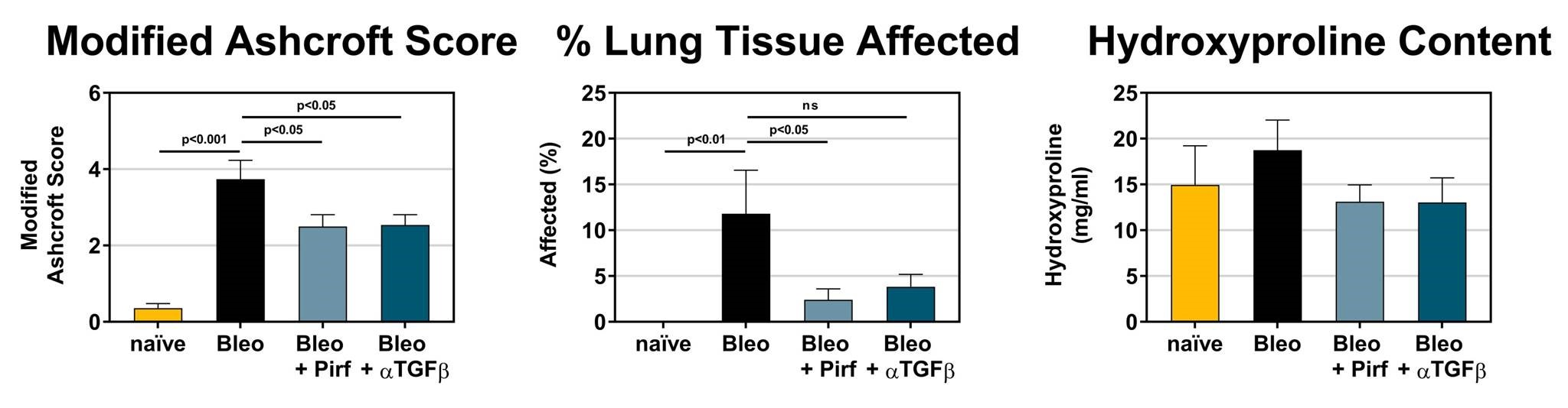 Measures of fibrosis are improved in mice dosed with Bleomycin (IT) when treated with either Pirfenidone or anti-TGFβ neutralizing antibody.