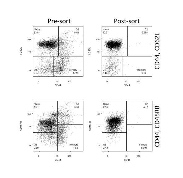 Cell Separation Purification: Representative FACS data pre and post sorting to isolate naïve T cells for adoptive transfer in a mouse model of IBD.