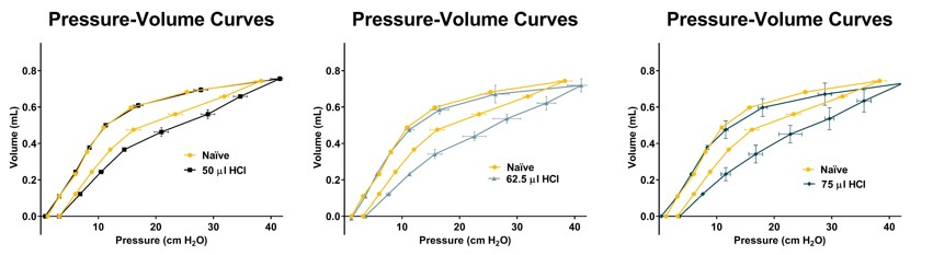 Pressure volume curves of HCl challenged mice demonstrate increased lung stiffness post challenge.