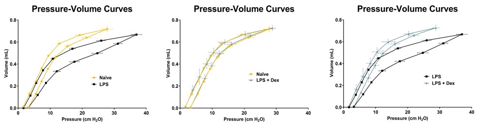 Pressure volume curves of LPS challenged mice demonstrate increased lung stiffness post challenge that is significantly reduced with dexamethasone treatment.