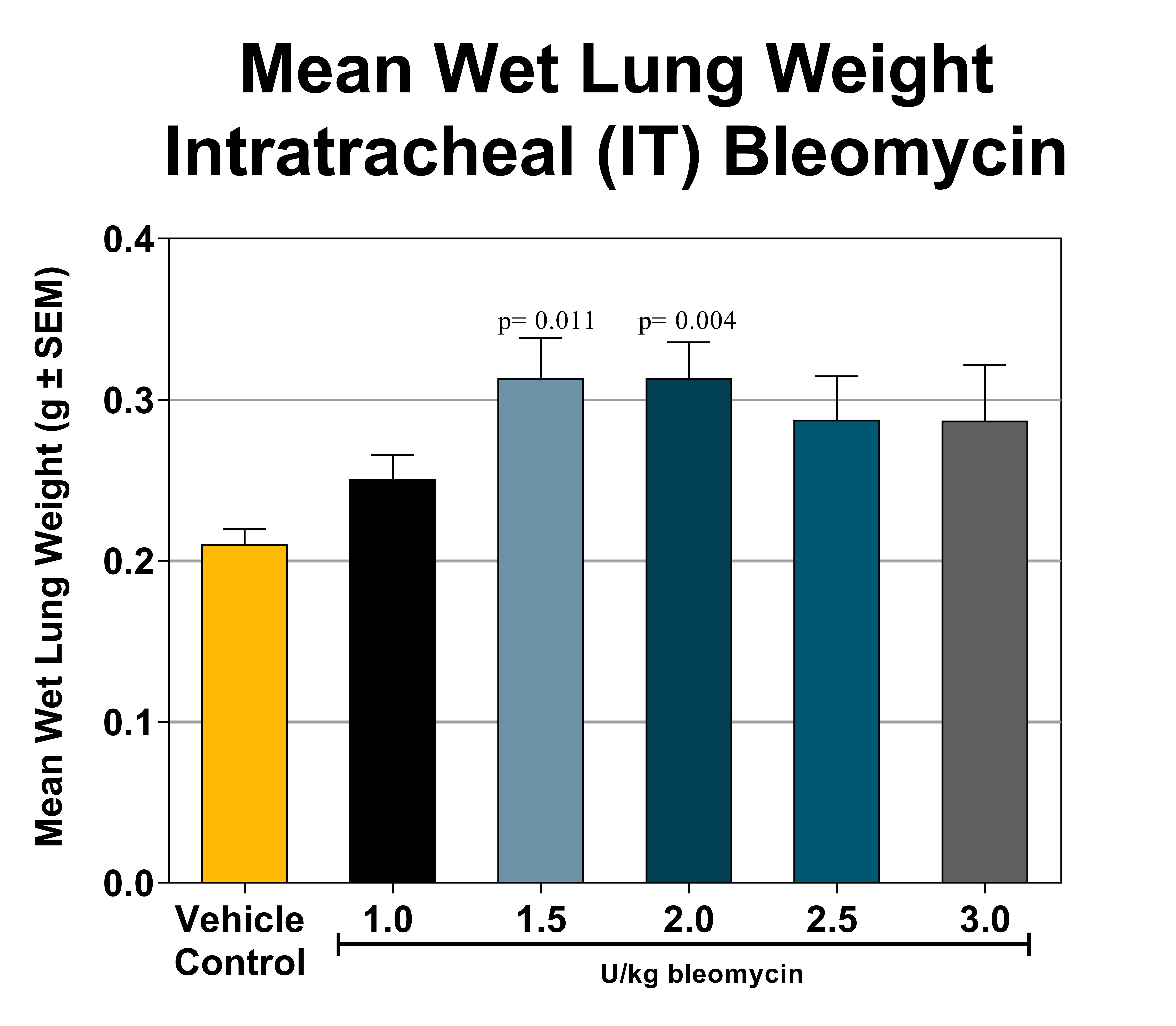Wet lung weight resulting from intratracheal bleomycin exposure