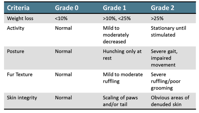 GVHD Scoring Scale for Disease Evaluation