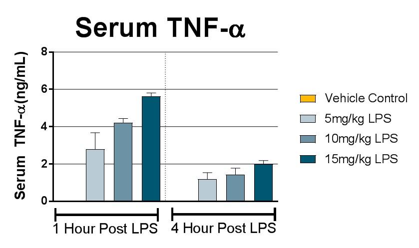 Serum TNF-a