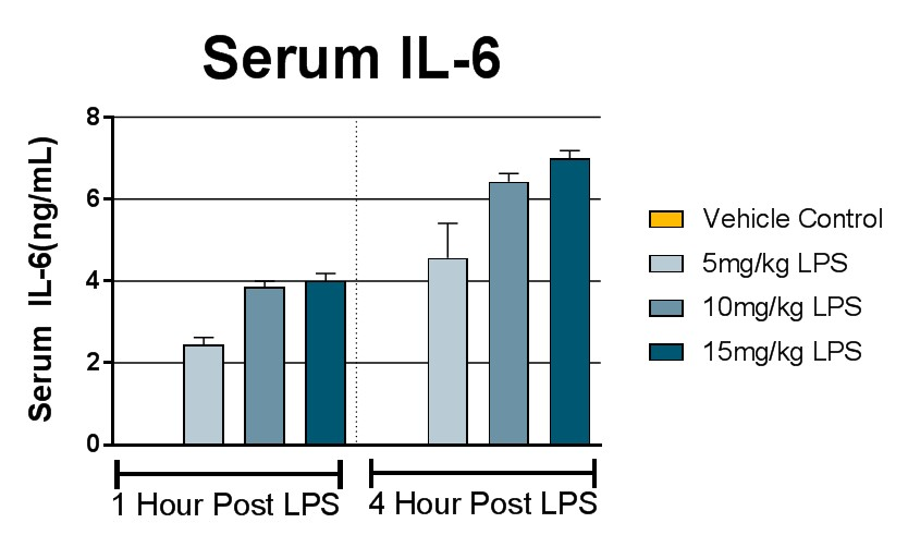 Serum IL-6