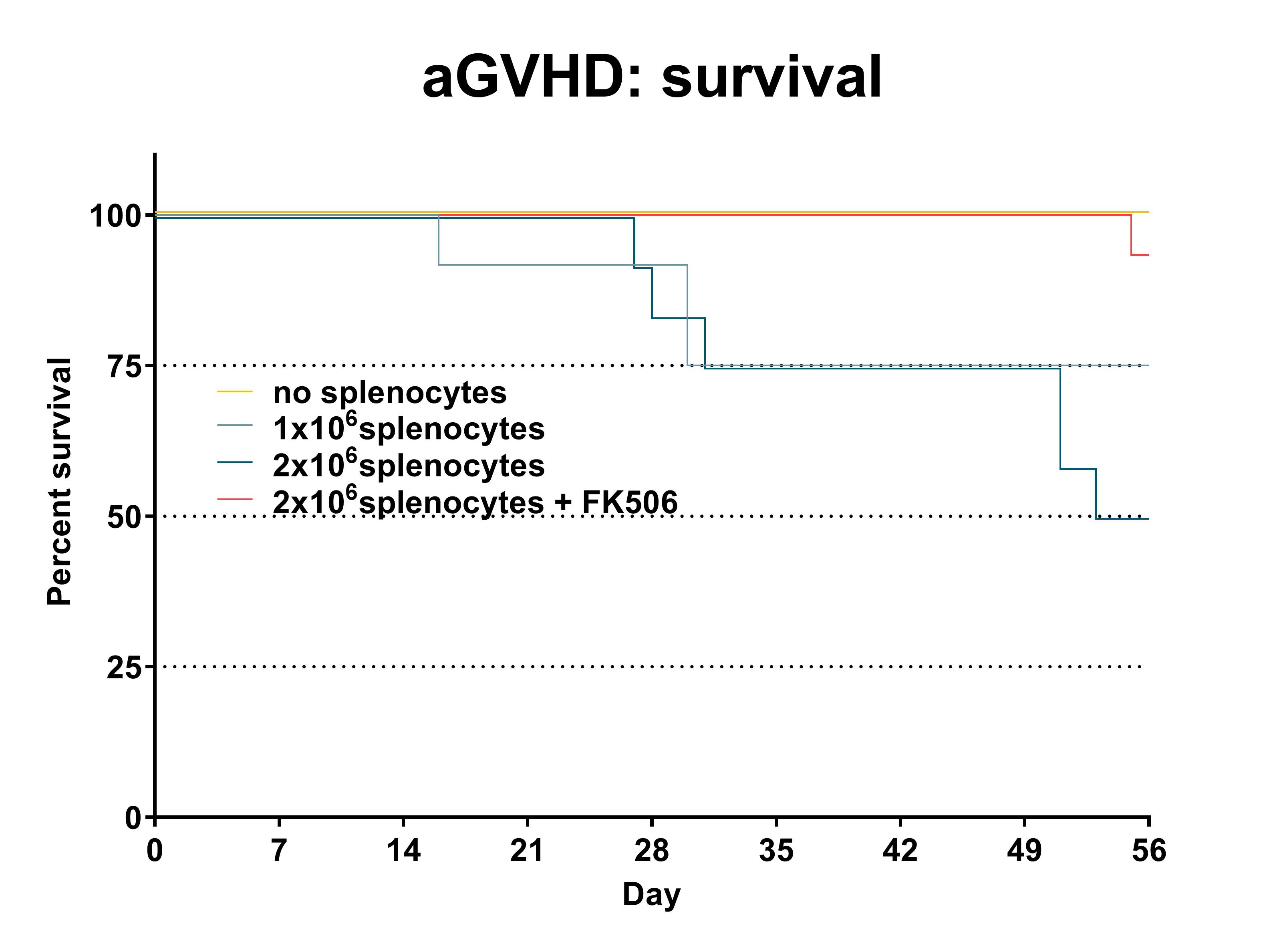 Recipient mice were pre-conditioned and transplanted with 1x107donor-derived CD3-depleted bone marrow cells supplemented with different numbers of splenocytes (see legend) on day 0. Survival was recorded daily. Statistical evaluation by Mantel-Cox test. *: p<0.05 compared to 'no splenocytes' control; #: p<0.05 compared to '2x106 splenocytes' group. n=15 per group.
