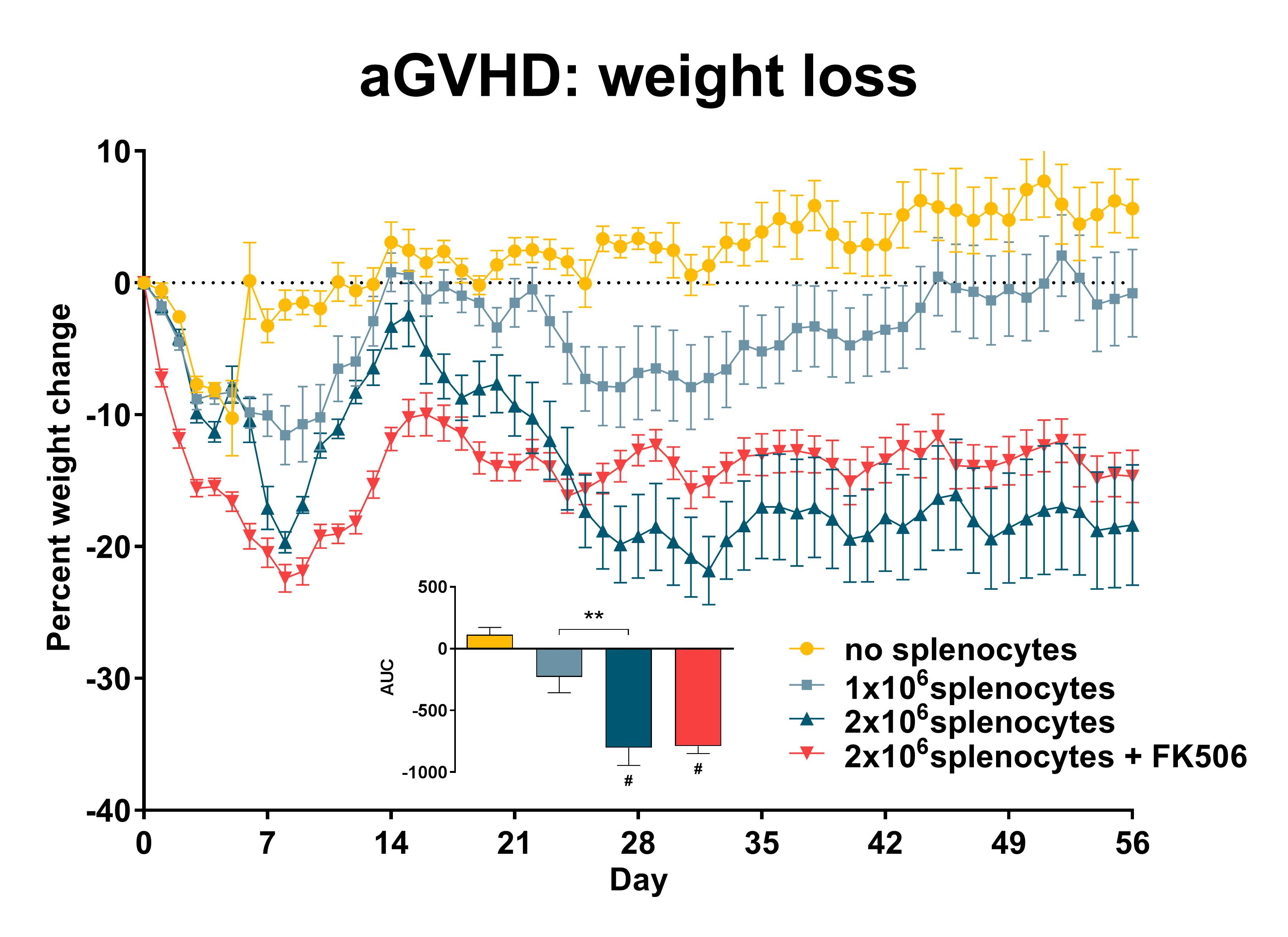 Recipient mice were pre-conditioned and transplanted with 1x107donor-derived CD3-depleted bone marrow cells supplemented with different numbers of splenocytes (see legend) on day 0. Weights were recorded daily and the percent weight change relative to day 0 was calculated. Statistical evaluation by one-way ANOVA with Holm-Šidák's multiple comparison post-test. **: p<0.01 comparing indicated groups; #: p<0.05 comparing indicated groups to the 'no splenocytes' control. AUC: area under the curve; n=15 per gro