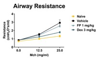 Airway Resistance increases with methacholine (Mch) challenge dose response in HDM challenged mice showing presence of hyperresponsive airways. Fluticasone (F)P and Dexamethasone (Dex) treatment reduces airway resistance with Dex being most effective at these doses.