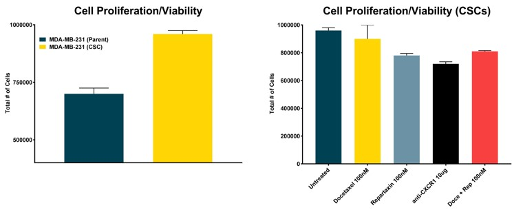 Cell Proliferation and Survival: (Left) MTT- proliferation/viability assays comparing breast cancer cells enriched for cancer stem cells to the parent (non-enriched) cell line. (Right) Proliferation/viability of enriched breast cancer stem cells treated with a variety of experimental compounds