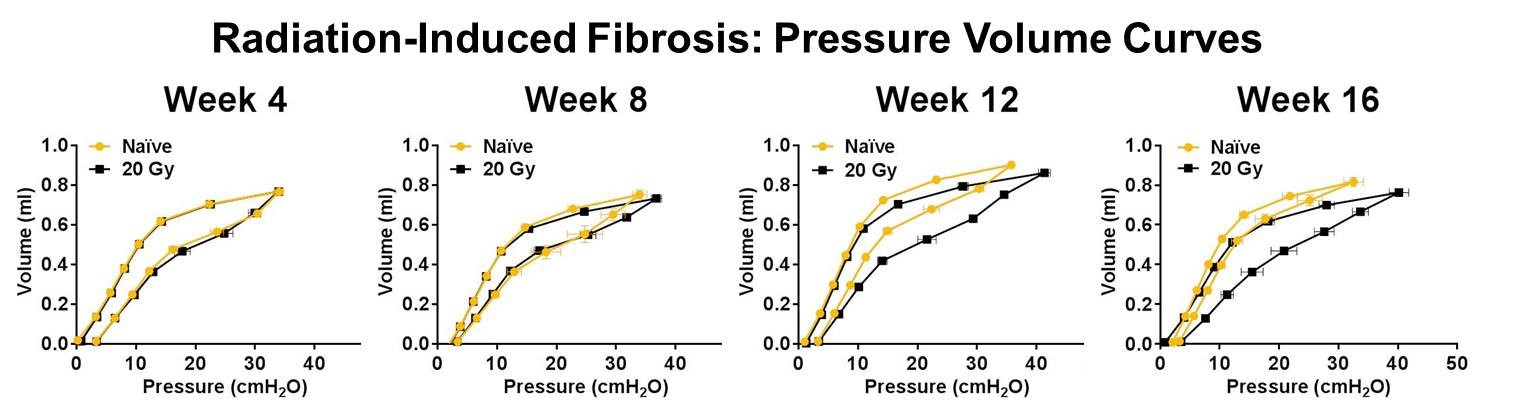 Pressure Volume Curves measured in Naïve and irradiated (20 Gy) mice over 16 weeks